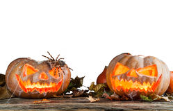 Halloween pumpkins isolated on white background Stock Photography