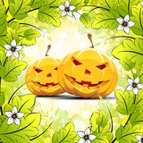 Halloween Pumpkins with Leaves Stock Photos