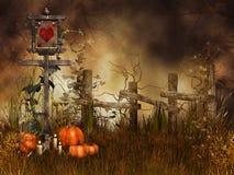 Halloween pumpkins on a meadow Stock Photos