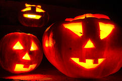 Halloween pumpkins in the night. Carved pumpkins glowing in the Halloween night Stock Photography