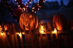 Halloween pumpkins at night Royalty Free Stock Photo