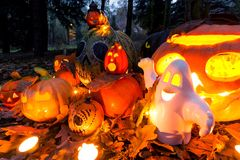 Halloween pumpkins - outdoor garden scene Stock Image