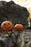 Halloween pumpkins on rocks with leaves Royalty Free Stock Photography