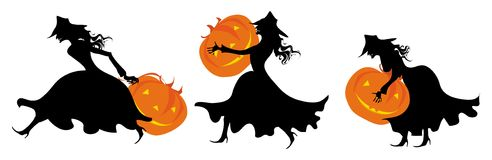 For halloween pumpkins's party. Silhouettes of three witches bringing pumpkins vector illustration