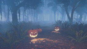 Halloween pumpkins in a scary night forest stock video