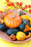 Halloween pumpkins, sill life. Stock Images