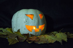 Halloween pumpkins smile and scary eyes Stock Photography