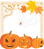 Halloween pumpkins and spiders in the ornamental frame Stock Images