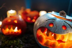 Halloween Pumpkins in a spooky forest at night royalty free stock photo