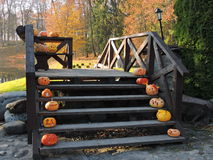 Halloween pumpkins on stairs Royalty Free Stock Images