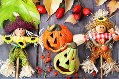 Halloween pumpkins, still life. Royalty Free Stock Images