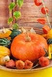 Halloween pumpkins, still life. Stock Photos