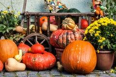 Halloween pumpkins on the street Stock Photos