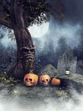 Halloween pumpkins under a fairy tree. Night scenery with Halloween pumpkins under a fairy tree at a cemetery stock illustration