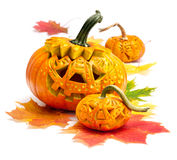 Halloween pumpkins on white background Royalty Free Stock Photography