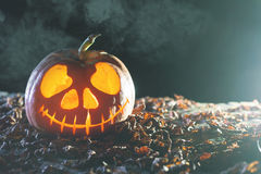 Halloween pumpkins at wood background. Carved scary faces of pumpkin. Royalty Free Stock Photo