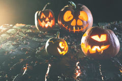 Halloween pumpkins at wood background. Stock Images