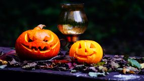 Halloween pumpkins on wood table in a creepy forest. Royalty Free Stock Photo