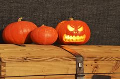 Halloween pumpkins on the wooden coffer royalty free stock images