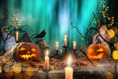 Halloween pumpkins on wooden planks. Stock Image