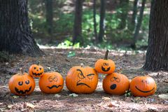 Halloween pumpkins in the woods stock images