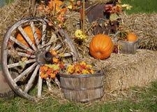 halloween Quebec Zdjęcie Stock