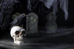 Halloween Raven e cranio Fotografia Stock Libera da Diritti