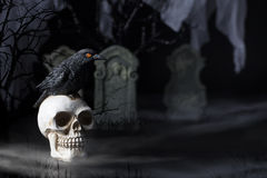 Halloween Raven and Skull Royalty Free Stock Photography