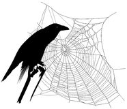 Halloween raven Royalty Free Stock Image