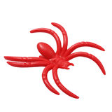 Halloween red spider isolated on white background Royalty Free Stock Images