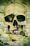 Halloween's skull. A skull for Halloween on a scary background Stock Image