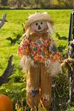 Halloween scarecrow Stock Photo