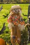 halloween scarecrow Arkivfoto