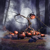 Halloween scarecrow. Creepy Halloween scarecrow in a pumpkin field at night Stock Photography