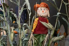 Halloween scarecrow decoration stock images