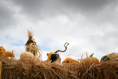 Halloween scarecrow Stock Photos