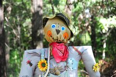 Halloween scarecrow in a field. Stock Photo