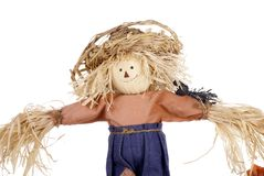Halloween Scarecrow with Straw Hat Royalty Free Stock Photo