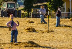 Halloween Scarecrows Outside Building. In Open Field Stock Image