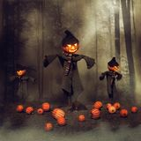 Scarecrows in a pumpkin field. Halloween scarecrows in a pumpkin field near a dark forest Stock Photos