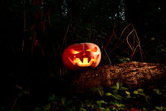 Halloween Scary and creepy pumpkin on a log in the darkness with Stock Photos