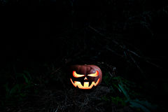 Halloween Scary Pumpkin in the forest in the dark with glowing e Royalty Free Stock Photo
