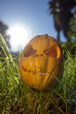 Halloween scary pumpkin in the gren grass Royalty Free Stock Photos