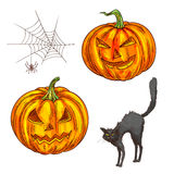 Halloween scary pumpkin lantern sketch icons Royalty Free Stock Photo