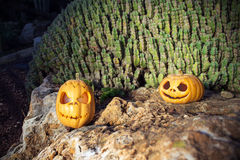 Halloween scary pumpkins with a smile in light on rock Stock Images