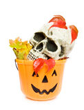 Halloween scary skull and pumpkin basket. Celebrating Halloween with scary skull and pumpkin sweets basket. Isolated on white background Royalty Free Stock Images