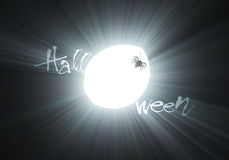 Halloween scary spider moon light flare Royalty Free Stock Images