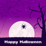 Halloween with Scary Spider Web and Bats Stock Image