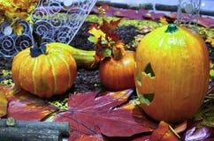 Halloween scene Royalty Free Stock Photos