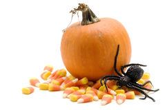 Halloween Scene Royalty Free Stock Photos